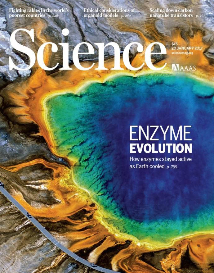 1월 20일자 사이언스 표지, 미국 옐로스톤의 그랜드 프리즈매틱 스프링의 일부를 담았다. 커버스토리는 그랜드 프리즈매틱 스프링에 사는 박테리아 효소에 대한 내용을 담았다. - 사이언스 제공