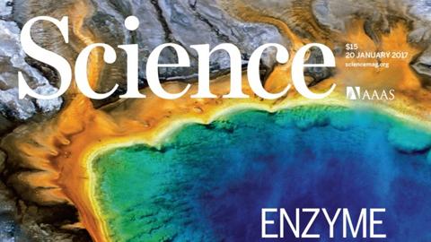 [표지로읽는과학] 뜨거운 곳 좋아하는 박테리아, 열적응 메커니즘 밝혀져