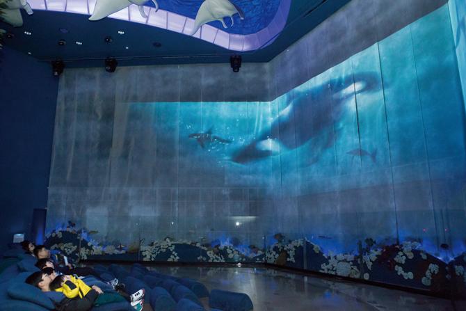 범고래의 공격으로 어미 혹등고래와 떨어진 새끼의 모험을 담은 영상을 감상하고 있는 모습. - 아자 스튜디오 이서연 작가 제공