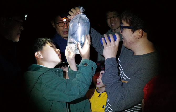 지사탐 현장교육에 참가해 수원청개구리와 수서곤충을 관찰했다. - 현준서(여주 이포초 하호분교 6), 어린이과학동아 제공