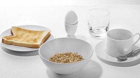 [환경] 벌이 사라진다면 우리의 식탁은?
