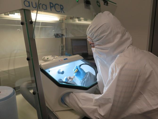 한 연구원이 악마문 동굴인의 유골의 게놈(유전체)을 분석하기 위해 샘플을 깨끗하게 하는 전처리를 하고 있다. - 사이언스 어드밴시스 제공