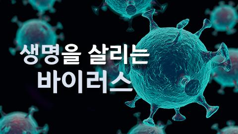 [카드뉴스] 생명을 살리는 바이러스