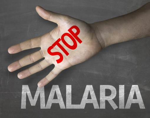 수학으로 말라리아 전염 막는다!