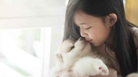 [개소리칼럼] 아이가 개 약을 먹는 사고가 생각보다 자주 일어납니다