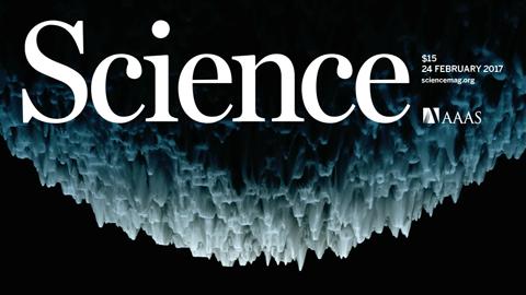 [표지로 읽는 과학-사이언스] 석회 동굴? 지르코니아가 탄소피막과 만나는 장면