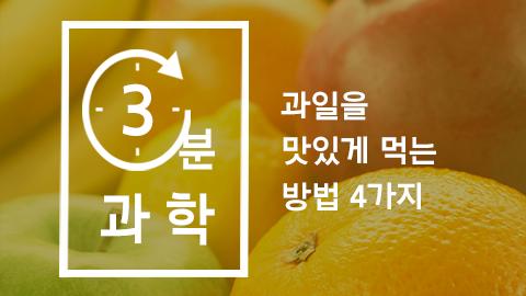 [카드뉴스] 과일을 맛있게 먹는 방법 4가지