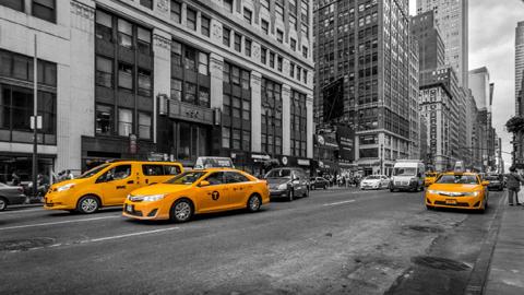 검은색, 노란색, 파란색 중 가장 사고가 덜 나는 택시는?