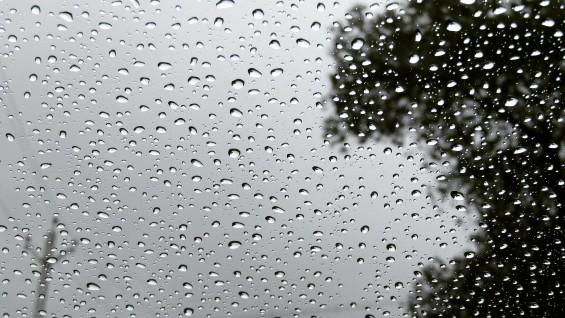 비가 와도 선명하게 볼 수 있는 차량용 카메라 개발