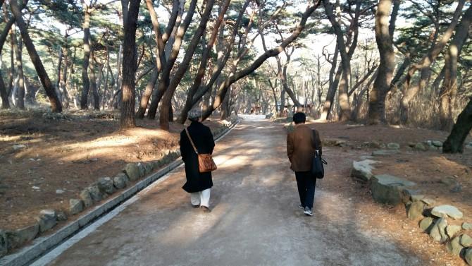 통도사 숲길을 걷는, 함께 여행한 두 시인 - 윤병무 제공