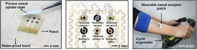 연구진이 개발한 신형 당뇨 패치의 모습. - 기초과학연구원 제공