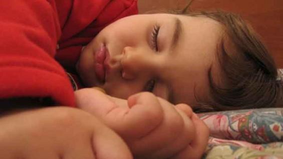 꿈을 꾸게 하는 '렘(REM) 수면'의 비밀