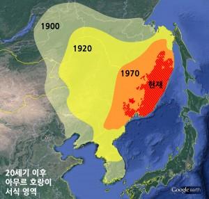 20세기 이후 백두산호랑이의 서식 영역 변화. 한반도에서는 1924년 강원도에서 포착된 사진을 마지막으로 흔적을 감췄다. - 한국범보전기금 제공