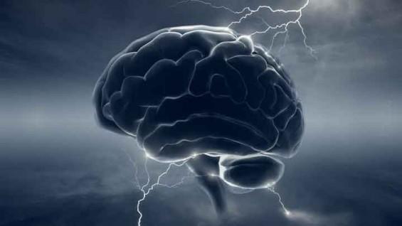 아날로그 방식의 '인공두뇌' 전자회로 개발