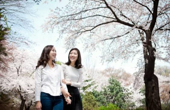 로맨틱한 봄꽃 데이트부터 밤의 피크닉까지 '2017 워커힐 봄꽃축제'