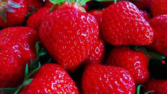 [퀴즈] 딸기와 라즈베리의 차이점은?