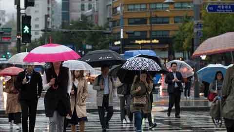 [1일 날씨] 봄비, 밤부터 그쳐…날씨는 비교적 '포근'