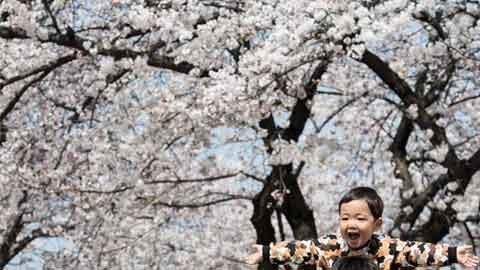 [4일 날씨] 낮 최고 24도 '봄 성큼'…큰 일교차 '주의'