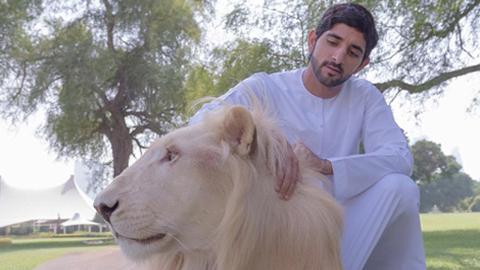 두바이 왕세자의 화려한 SNS '인기'