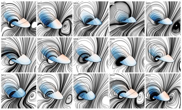 모기의 날개짓(위로 올리는)으로 형성되는 소용돌이를 그래프로 나타낸 모습. 연구팀은 시간의 흐름에 따라 날개의 위아래 쪽에 압력이 어떻게 달라지는 지를 알아냈다. - Nature 제공
