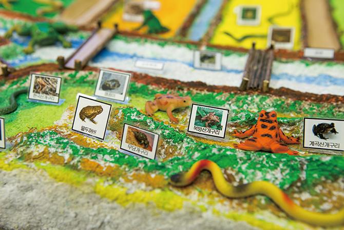 올해 스태프로 활약하는 닥터구리 팀의 개구리 입체 지도. - 아자스튜디오 제공