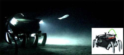 심해 보행로봇 CR6000이 바닷속에서 심해어와 맞닥뜨린 장면(왼쪽 사진)과 CR6000의 모습 - 선박해양플랜트연구소 제공