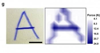 역학변색형 압력감지 터치스크린에 쓰인 글자(왼쪽)과 색을 통해 화면을 누른 세기를 분석한 결과. - UNIST 제공