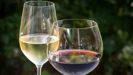 [퀴즈] 맥주는 와인잔에 마셔야 한다?