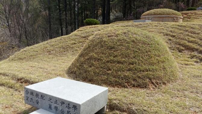 필자 선친의 묘소 - 윤병무 제공