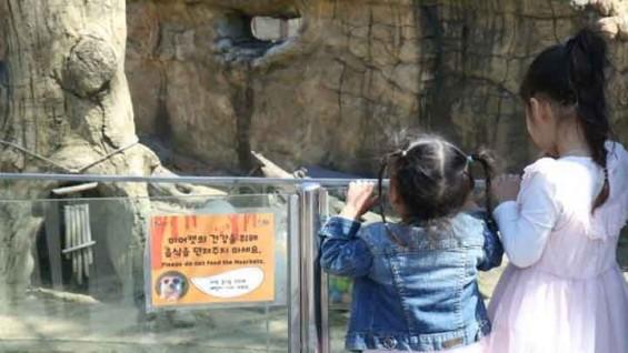 죽음으로 불행을 말하는 동물원 동물들