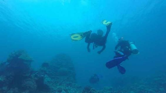 [장영실주니어연구단 모집] 태평양해양과학기지로 초대합니다!