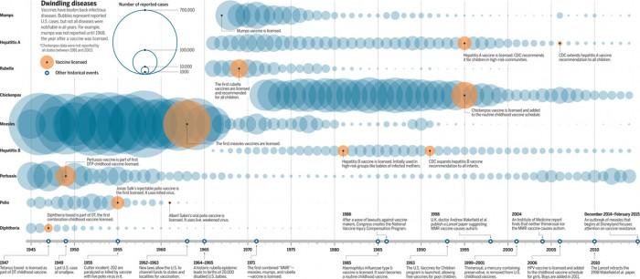 메레디스 와드만 '사이언스' 필자가 만든 그래픽. 미국에서 주요 전염병이 백신개발 뒤 얼마나 드라마틱하게 줄어들었는지 한 눈에 볼 수 있다. - SCIENCE 제공