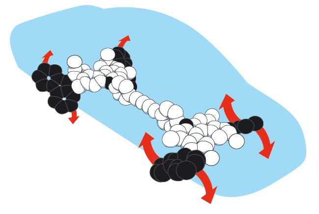 2016년 노벨 화학상 수상자 베르나르트 페링하 네덜란드 흐로닝언대 교수팀이 만든 나노자동차. 빛과 열에 의해 한 방향으로 회전하는 분자모터 4개를 이용해 만들었다. - 노벨상위원회 제공