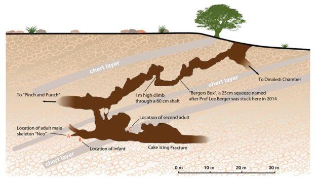 호모 날레디가 발굴된 남아프리카공화국의 라이징스타 동굴. - eLife 제공