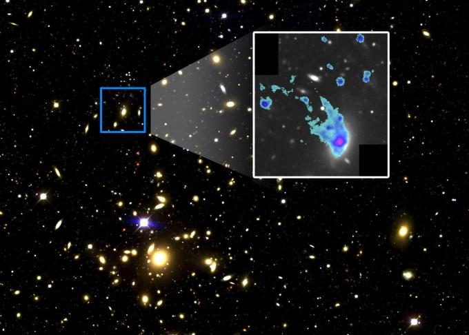 사진은 지구로부터 약 11억 광년 떨어진 곳에 위치한 거대은하단 '아벨 2670(Abell 2670)'의 모습이며, 이 중 파란 사각형 안에 있는 은하가 이번에 발견한 해파리 타원은하(SDSS J235418.35-102014.8)이다. 우측에 확대된 자료에서는 은하의 중심(붉은 부분)에서 바깥으로 가스의 꼬리가 흩날리는 해파리 모양을 확인할 수 있다. - 한국천문연구원 제공