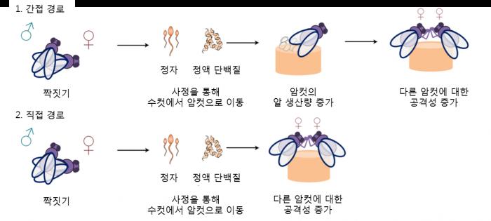 네이처 제공