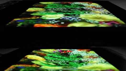 삼성디스플레이, SID2017서 '화면 늘어나는 디스플레이' 선봬