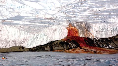 남극의 '피의 폭포' 미스터리 풀리나