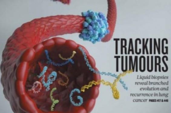 [표지로 읽는 과학: 네이처] 혈액검사로 폐암 재발 가능성, 기존 대비 70일 빨리 알아낸다