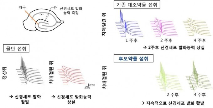 한국과학기술연구원 제공