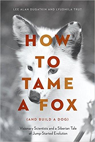 1952년 시작돼 지금까지 진행되고 있는 러시아의 '여우 가축화 프로젝트'를 소개한 책 '여우를 어떻게 길들일까(그리고 개로 만들까)'가 최근 출간됐다. - amazon.com 제공