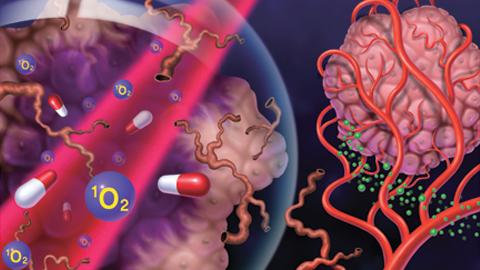 고산병 치료제로 암세포 찾아가는 근적외선 광역학치료제 개발