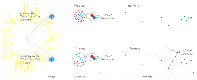 일반 제1형 초신성(위)와 SN1991bg 유형 초신성(아래)의 동위원소 붕괴 과정을 비교한 그림이다. 일반 제1형 초신성의 경우 니켈56이 금방 붕괴돼 양전자(빨간색)가 폭발 반경 내부의 전자(파란색)와 만나 소멸된다. 반면 SN1991bg 유형 초신성의 경우 티타늄44가 천천히 붕괴되므로 양전자 대다수가 우주공간의 전자와 만나 소멸하고 따라서 이때 나오는 감마선을 관측할 수 있다. - 네이처 천문학 제공