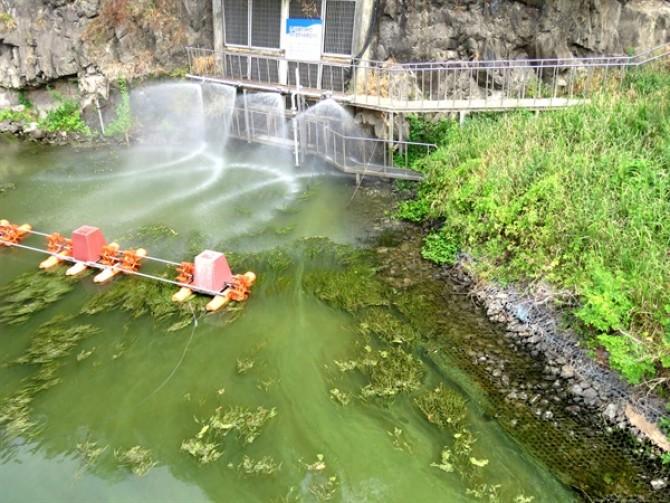 창원 북면에 있는 낙동강 본포취수장은 이번 주말 사이(24~25일) 녹조가 더 짙게 발생한 모습. 이곳은 창원지역의 수돗물의 원수가 되는 곳이다. - 마량진환경연합 제공