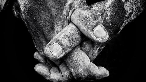부두 노동자의 손과 꽃 '올해의 아이폰 사진'