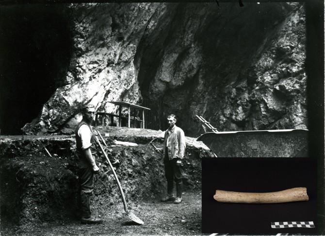 독일 남서쪽 '호렌스테인-스테달 동굴(Hohlenstein-Stadal Cave)'에서 1937년 발굴했던 약 12만4000년 전의 네안데르탈인 대퇴골 속 미토콘드리아 유전자를 분석한 결과, 약 40만 년 전에 처음으로 네안데르탈인과 현대인이 분리됐다는 것을 확인됐다 - MAX PLANK INSTITUTE 제공