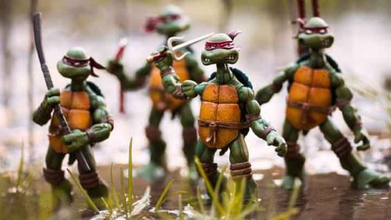 [화보] 공격 준비 끝난 '닌자 거북이'