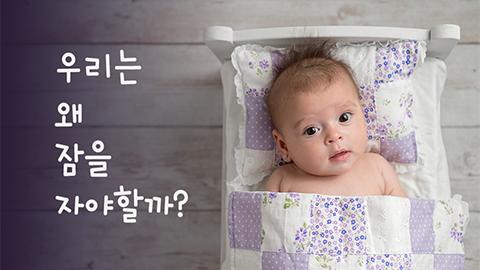 [카드뉴스] 우리는 왜 잠을 자야할까?