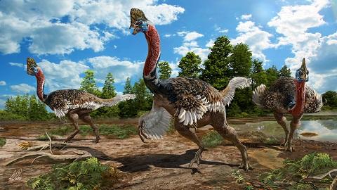 머리에 투구 달린 신종 공룡 발견