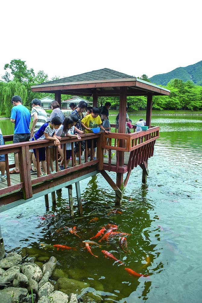 연구소 안에 있는 연못에서 비단잉어에게 밥을 주는 지사탐 대원들. - 남윤중(AZA studio) 제공